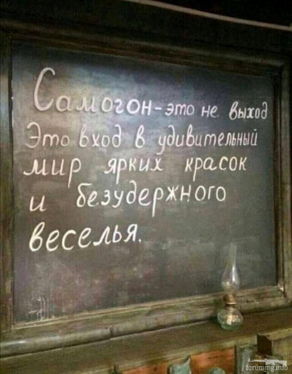117473 - Пить или не пить? - пятничная алкогольная тема )))