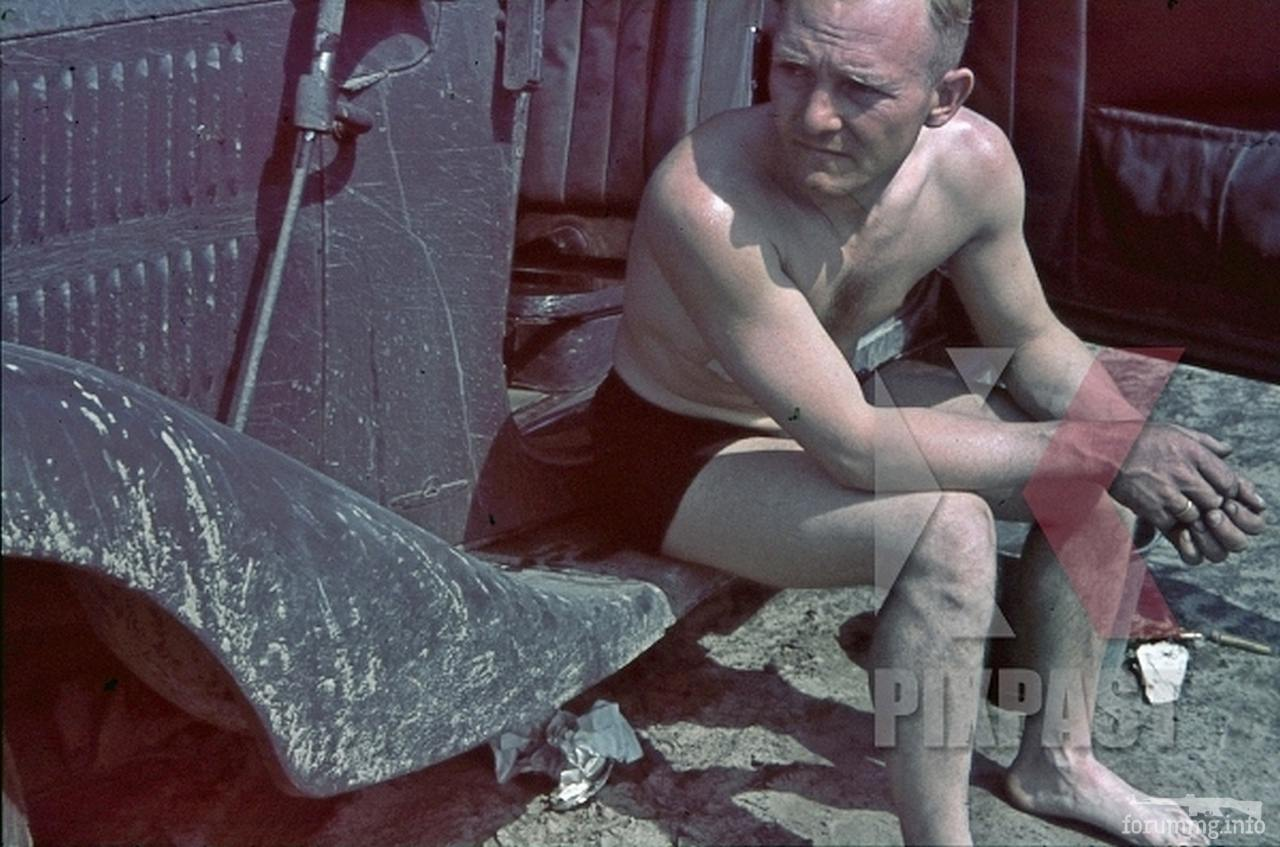 117930 - Военное фото 1941-1945 г.г. Восточный фронт.