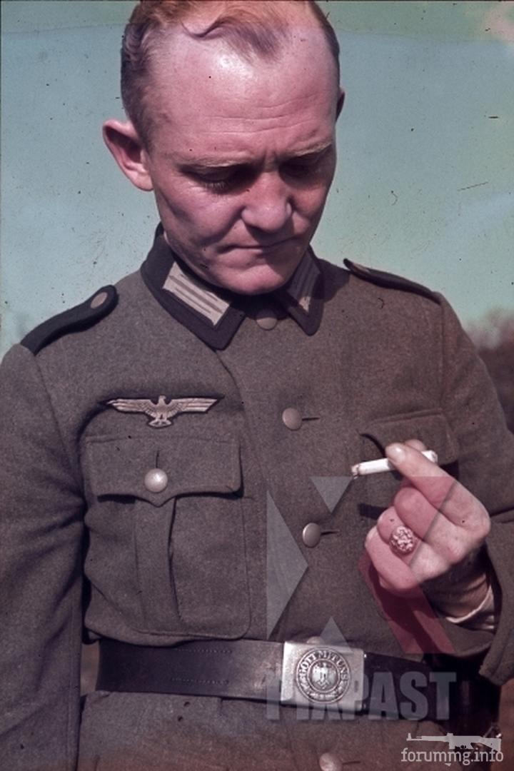 117933 - Военное фото 1941-1945 г.г. Восточный фронт.