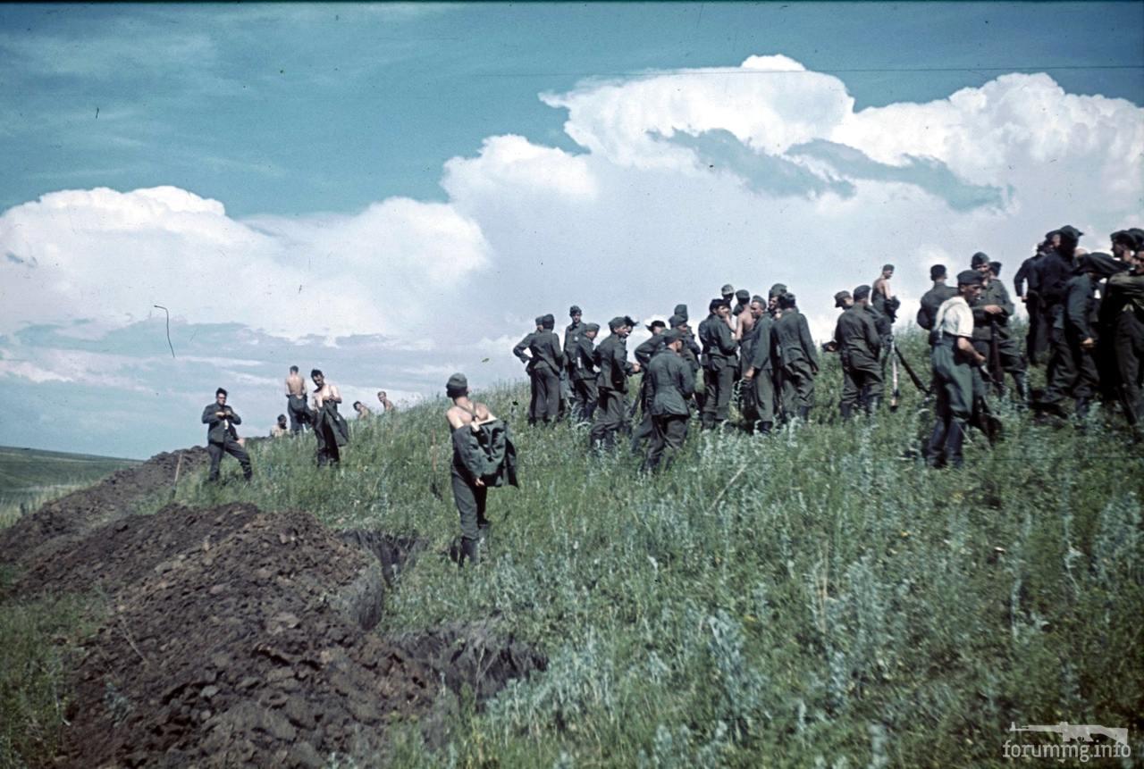 118092 - Военное фото 1941-1945 г.г. Восточный фронт.