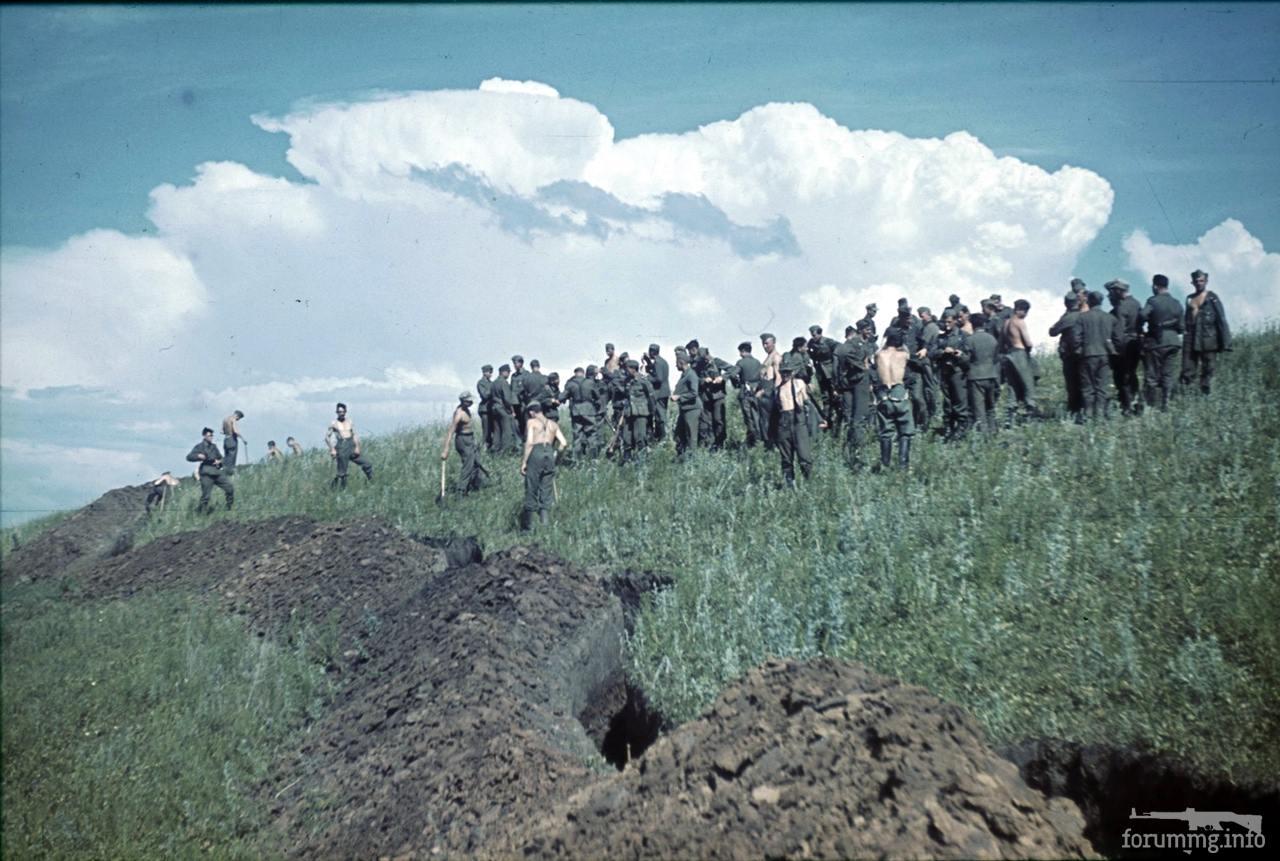 118093 - Военное фото 1941-1945 г.г. Восточный фронт.