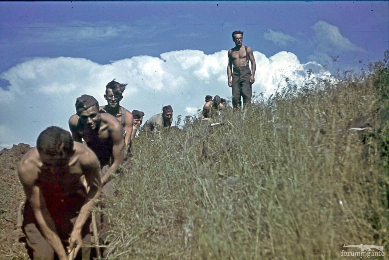 118094 - Военное фото 1941-1945 г.г. Восточный фронт.