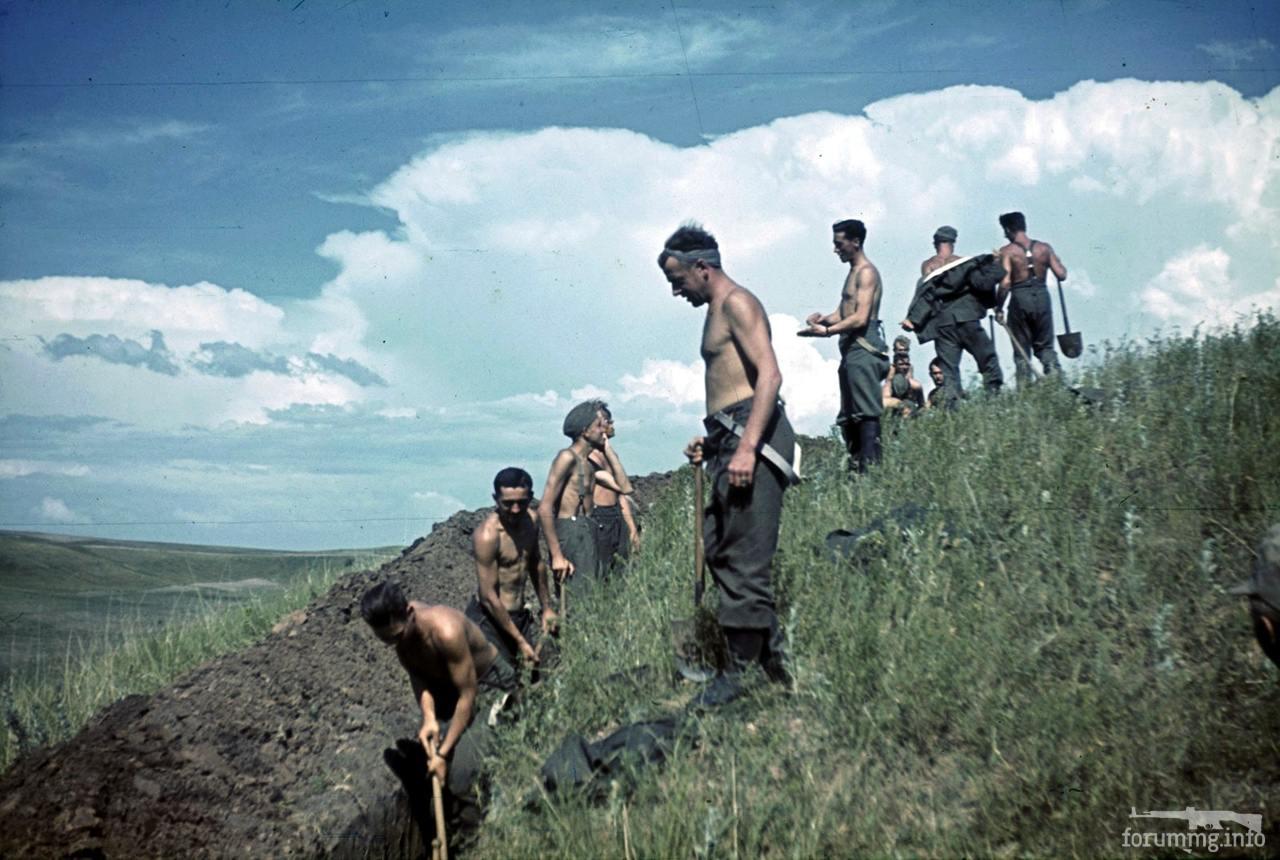 118095 - Военное фото 1941-1945 г.г. Восточный фронт.