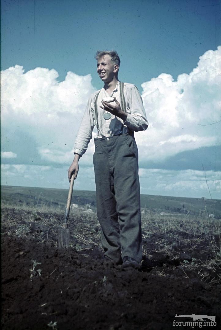 118100 - Военное фото 1941-1945 г.г. Восточный фронт.