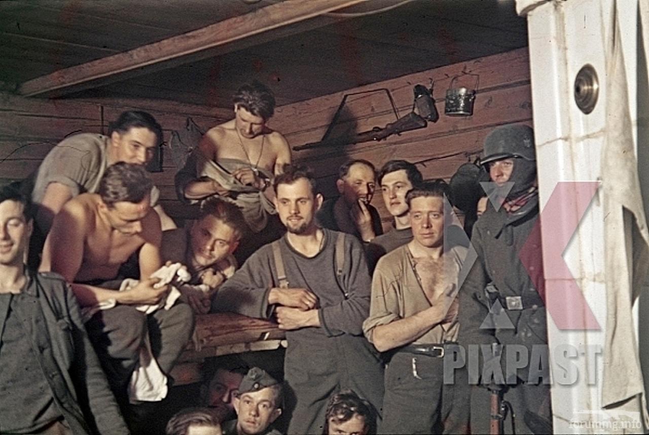 118102 - Военное фото 1941-1945 г.г. Восточный фронт.