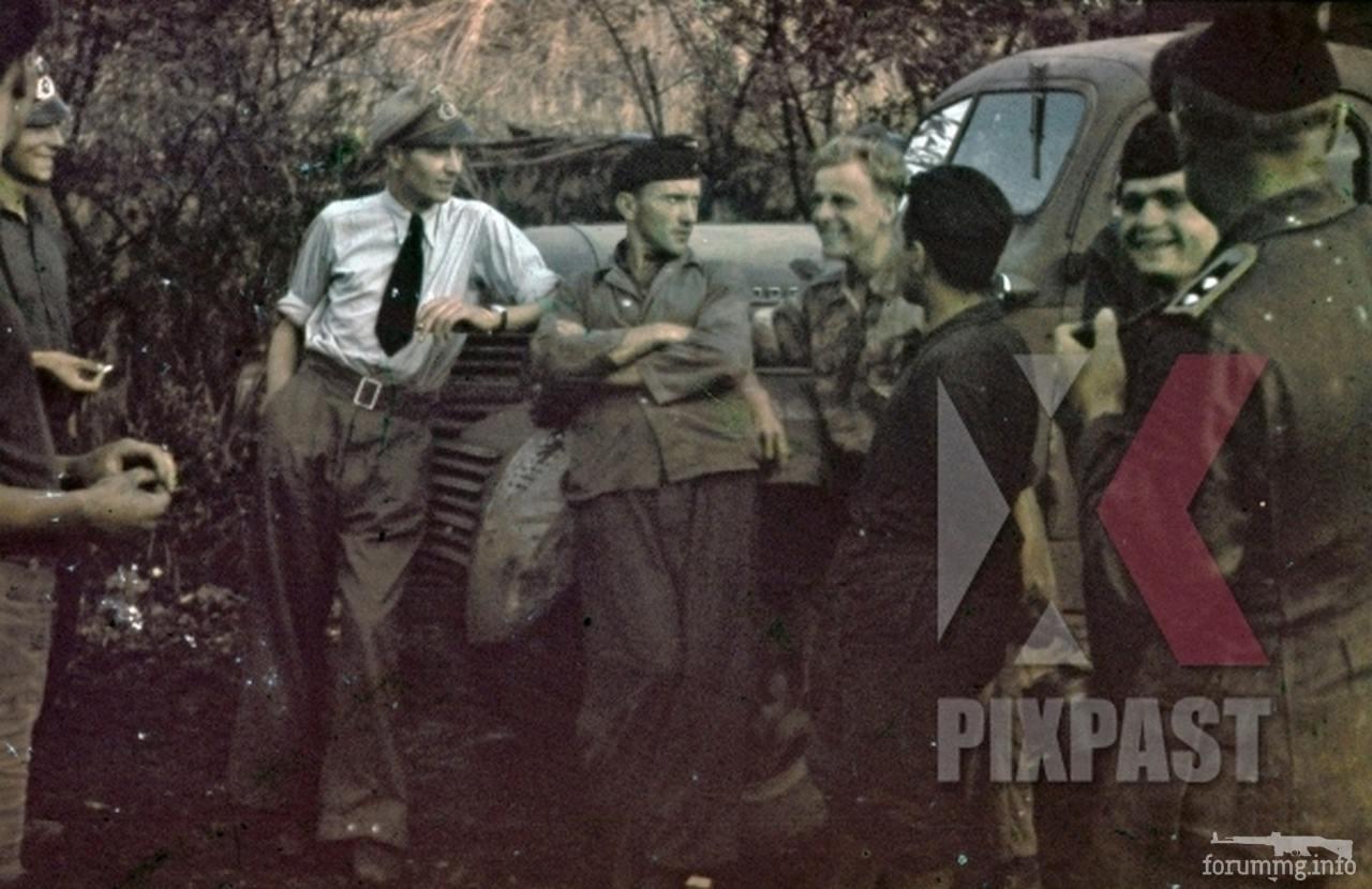 118103 - Военное фото 1941-1945 г.г. Восточный фронт.