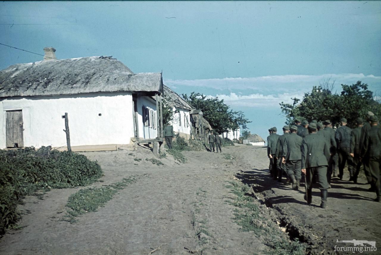 118166 - Военное фото 1941-1945 г.г. Восточный фронт.