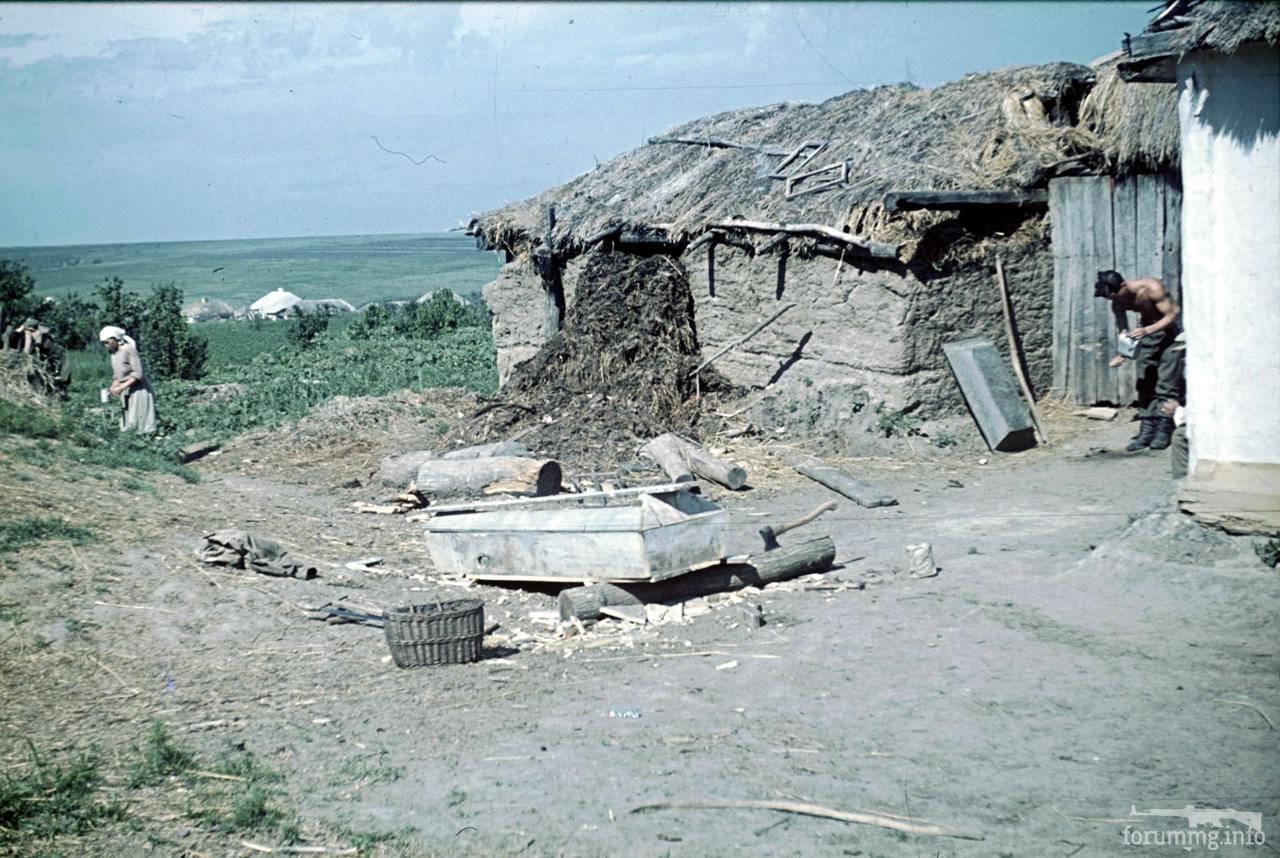 118171 - Военное фото 1941-1945 г.г. Восточный фронт.