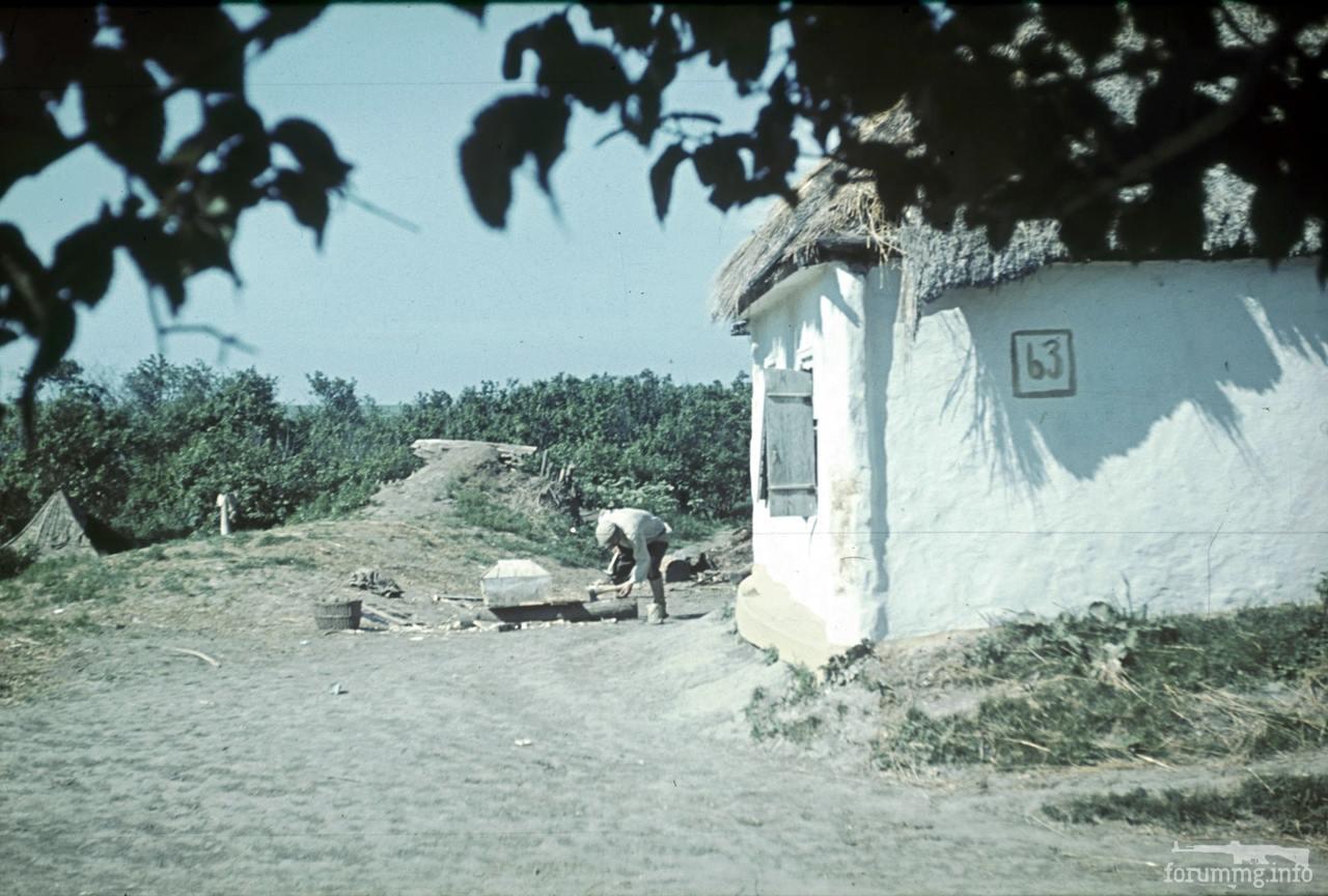 118172 - Военное фото 1941-1945 г.г. Восточный фронт.