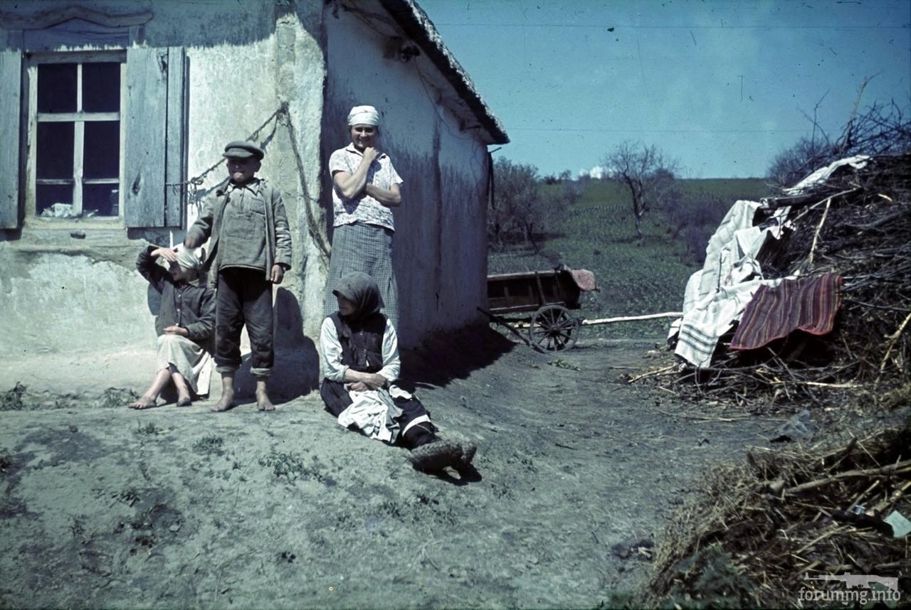 118173 - Военное фото 1941-1945 г.г. Восточный фронт.
