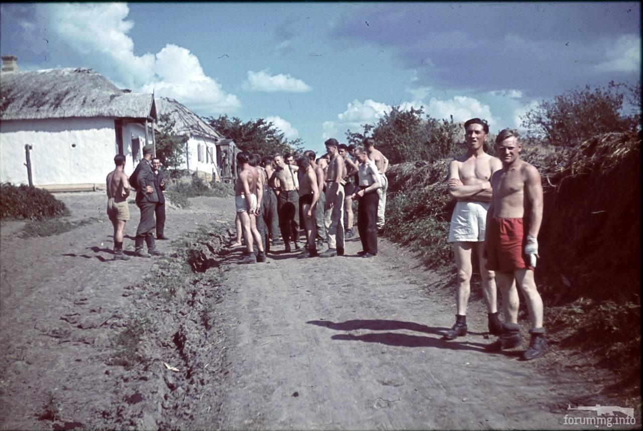 118175 - Военное фото 1941-1945 г.г. Восточный фронт.