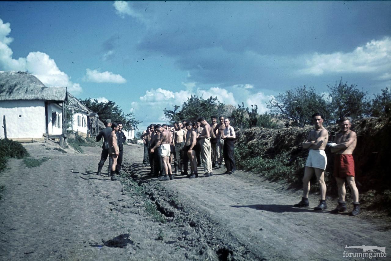 118176 - Военное фото 1941-1945 г.г. Восточный фронт.