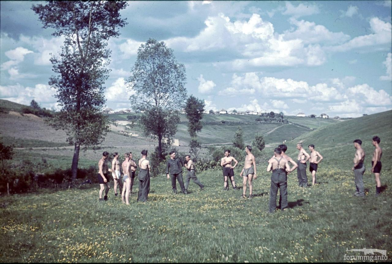 118177 - Военное фото 1941-1945 г.г. Восточный фронт.