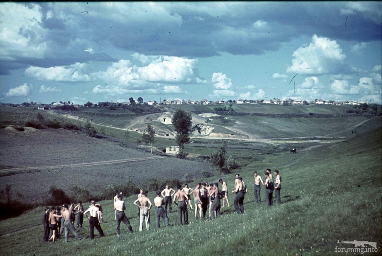 118179 - Военное фото 1941-1945 г.г. Восточный фронт.