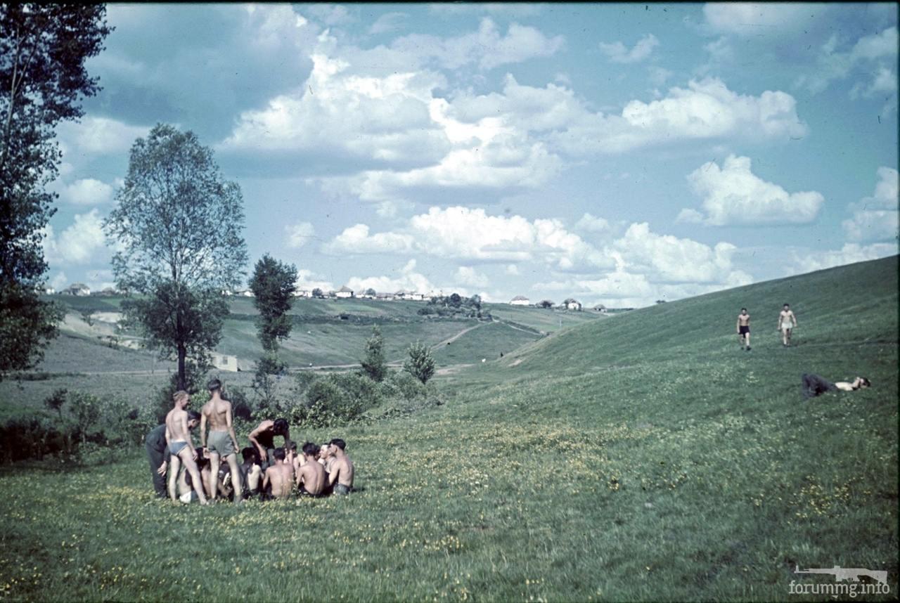 118180 - Военное фото 1941-1945 г.г. Восточный фронт.