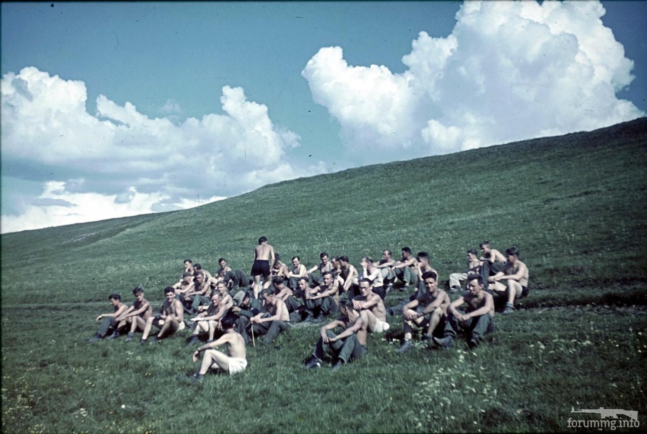 118181 - Военное фото 1941-1945 г.г. Восточный фронт.