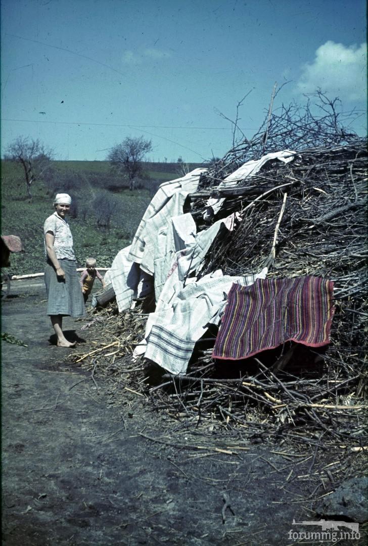118186 - Военное фото 1941-1945 г.г. Восточный фронт.