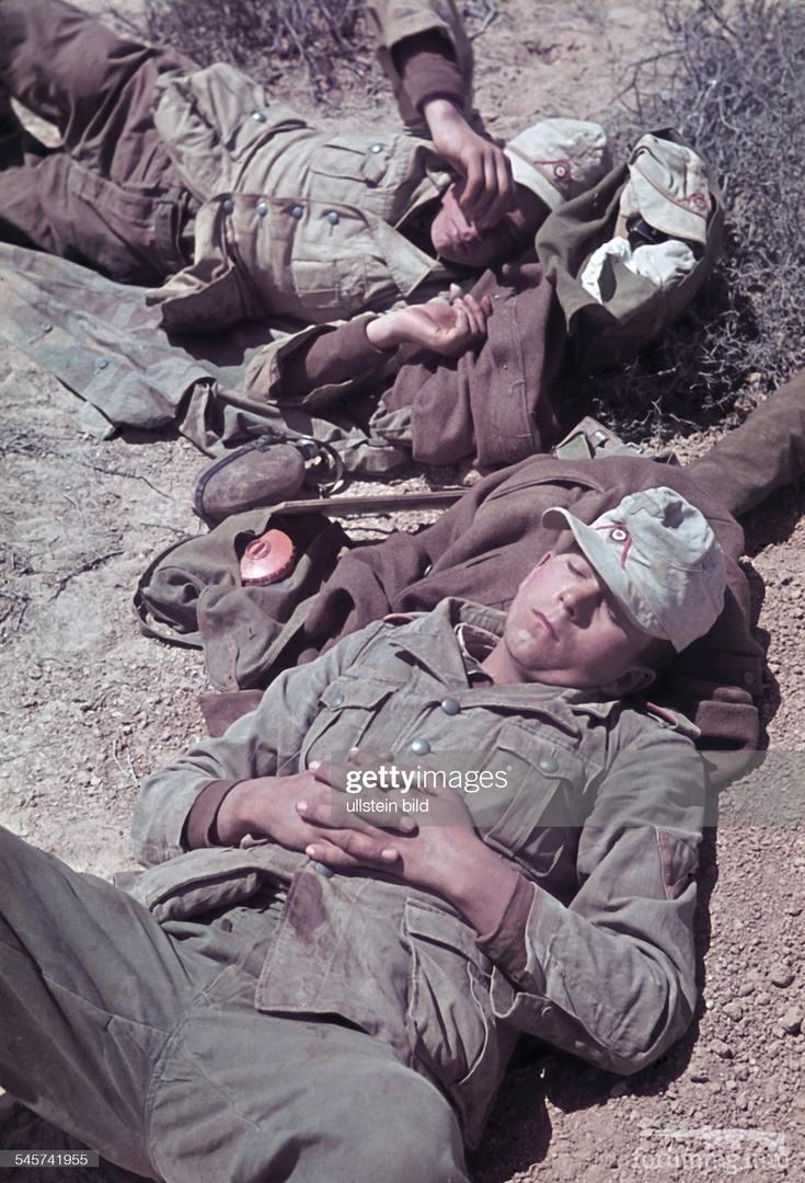 118307 - Военное фото 1939-1945 г.г. Западный фронт и Африка.