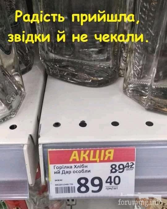 118444 - Пить или не пить? - пятничная алкогольная тема )))