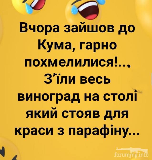 118724 - Пить или не пить? - пятничная алкогольная тема )))