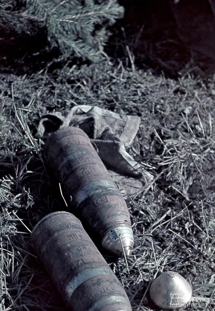 118794 - Восточный фронт - Карелия