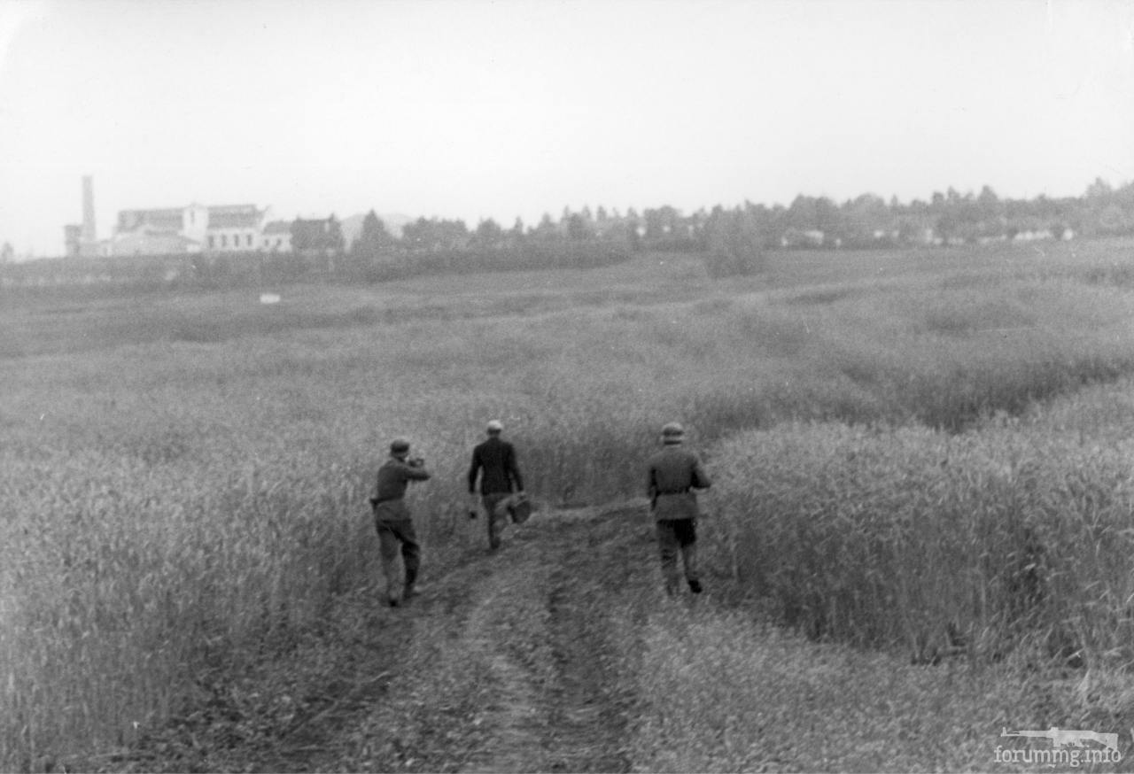 118873 - Лето 1941г,немецкие фото.