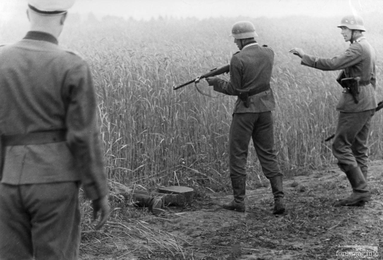 118874 - Лето 1941г,немецкие фото.