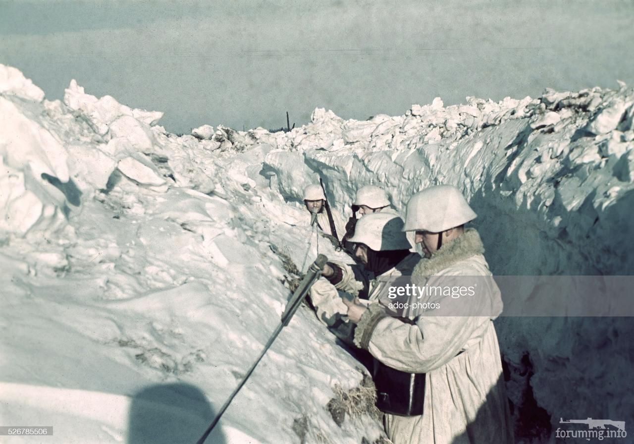 118888 - Военное фото 1941-1945 г.г. Восточный фронт.