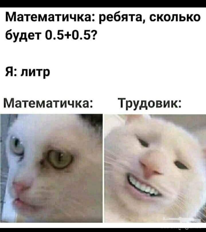 119344 - Пить или не пить? - пятничная алкогольная тема )))