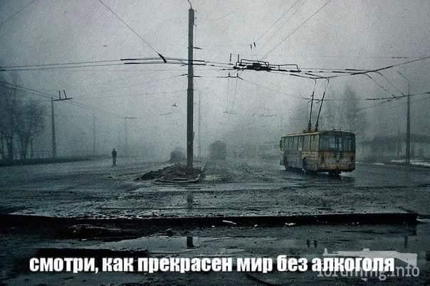 119552 - Пить или не пить? - пятничная алкогольная тема )))