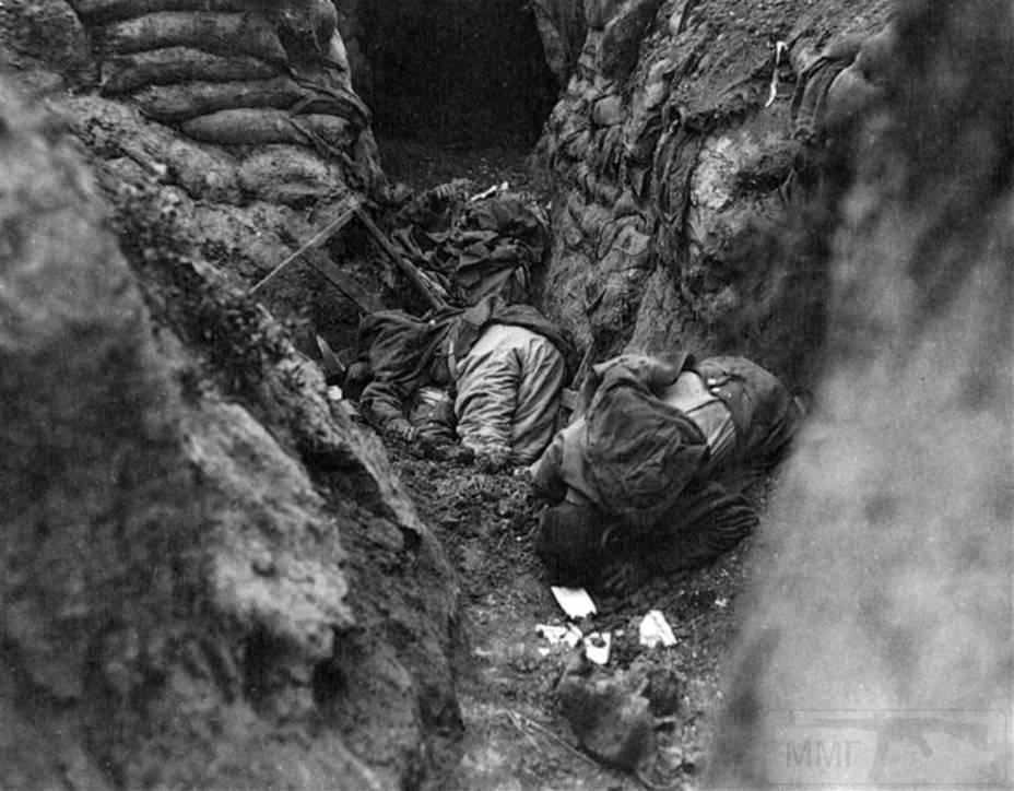 1196 - Атака мертвецов