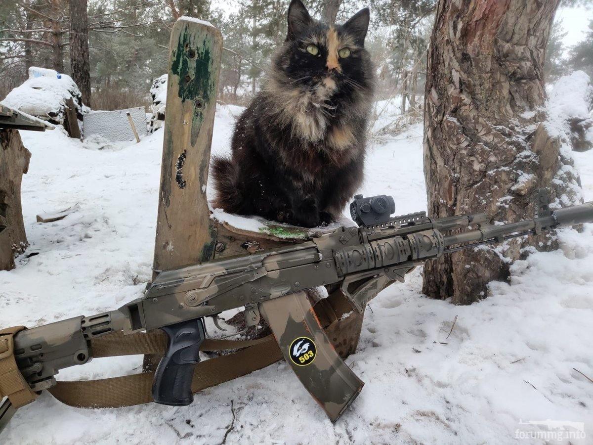 119695 - Животные на войне