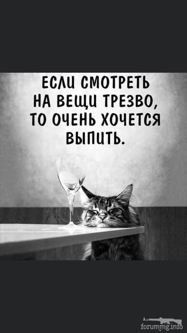 119815 - Пить или не пить? - пятничная алкогольная тема )))