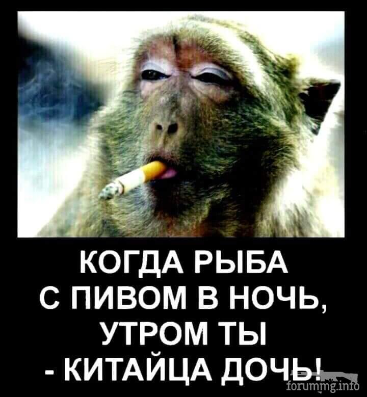 119867 - Пить или не пить? - пятничная алкогольная тема )))