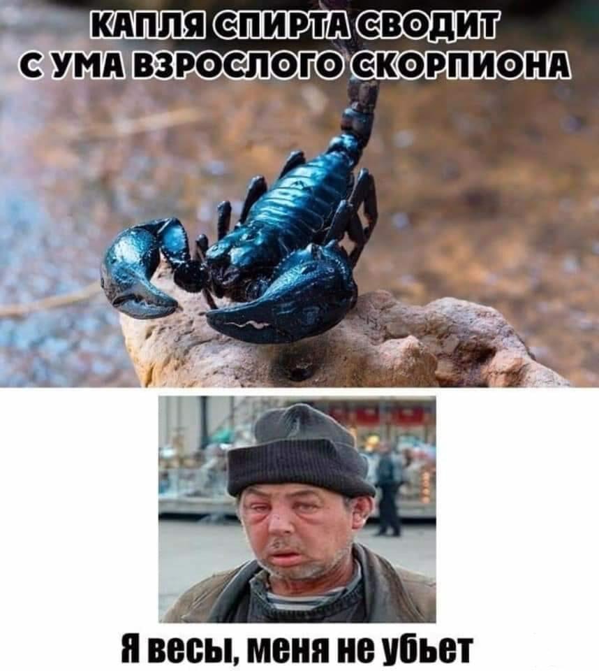 120023 - Пить или не пить? - пятничная алкогольная тема )))