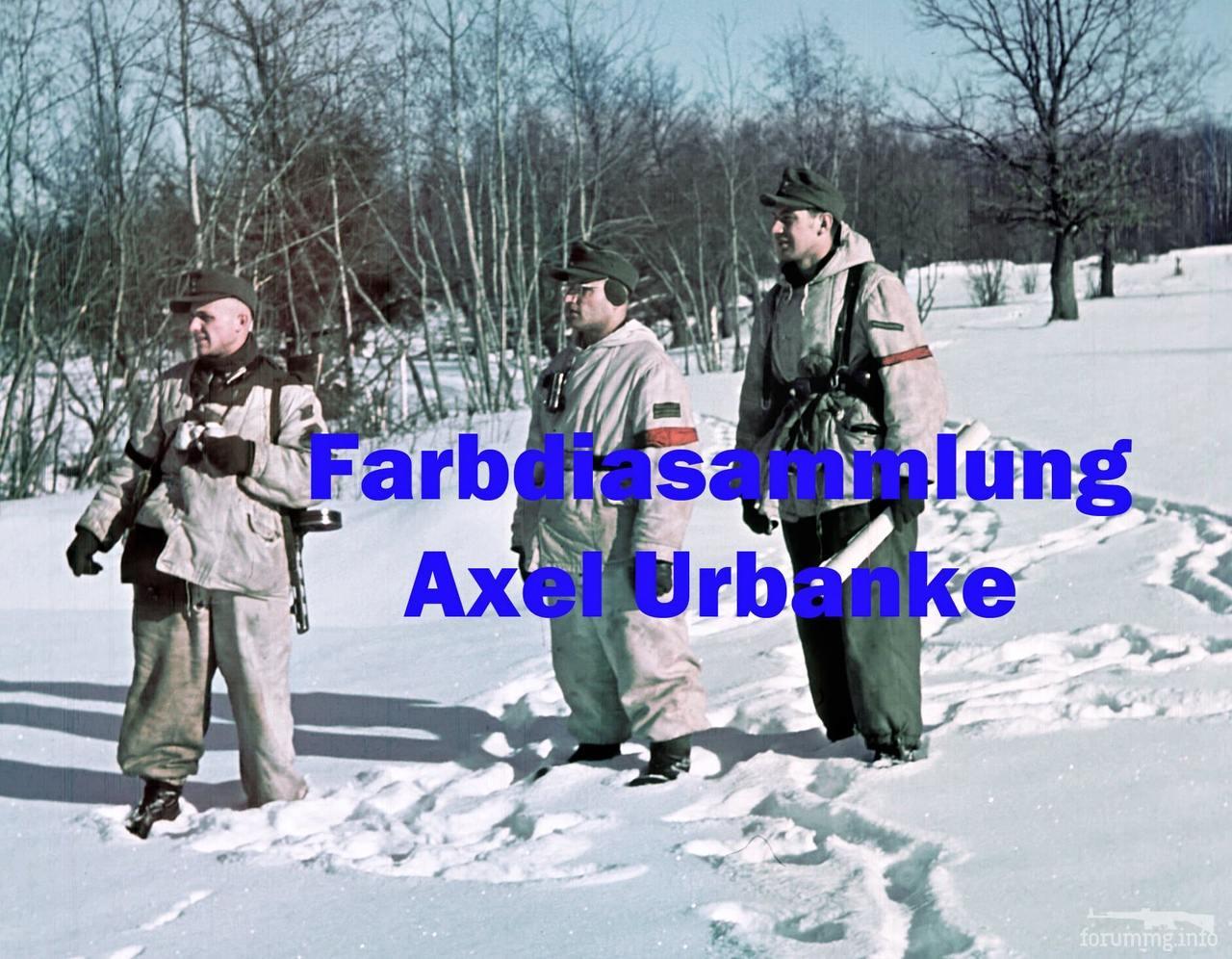 120464 - Военное фото 1941-1945 г.г. Восточный фронт.