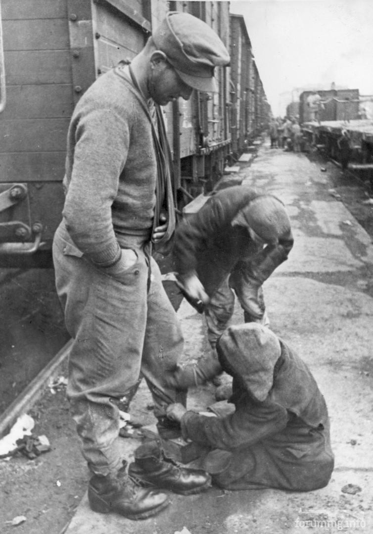 120467 - Военное фото 1941-1945 г.г. Восточный фронт.