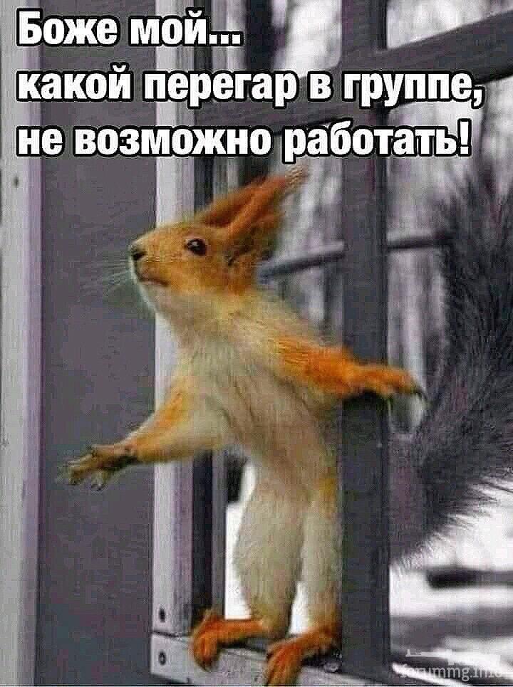 120721 - Пить или не пить? - пятничная алкогольная тема )))