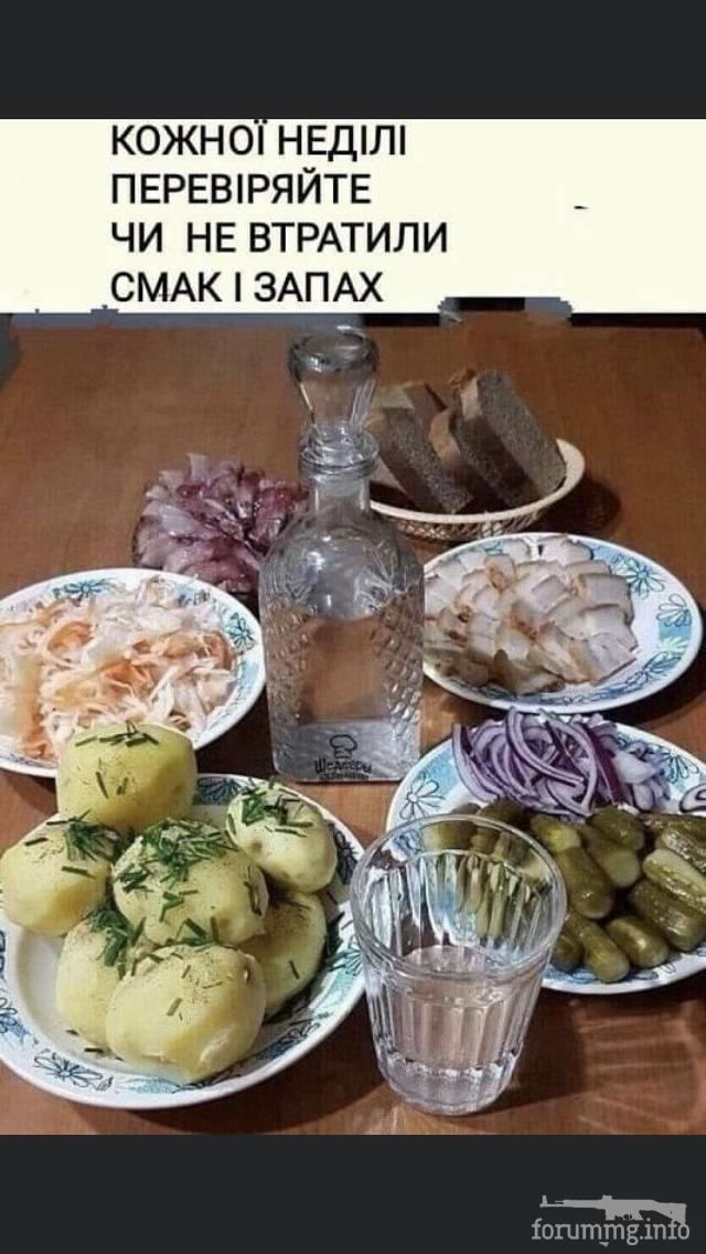 120785 - Пить или не пить? - пятничная алкогольная тема )))