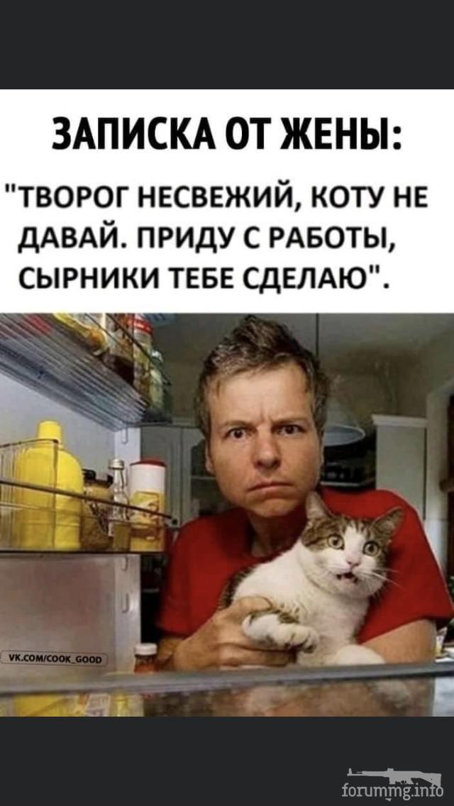 121187 - Смешные видео и фото с животными.