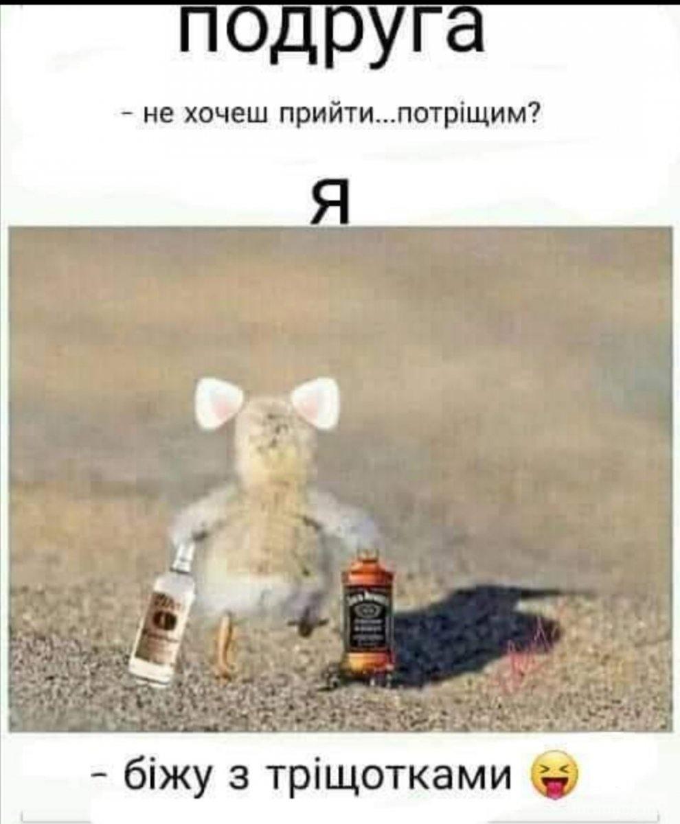 121615 - Пить или не пить? - пятничная алкогольная тема )))