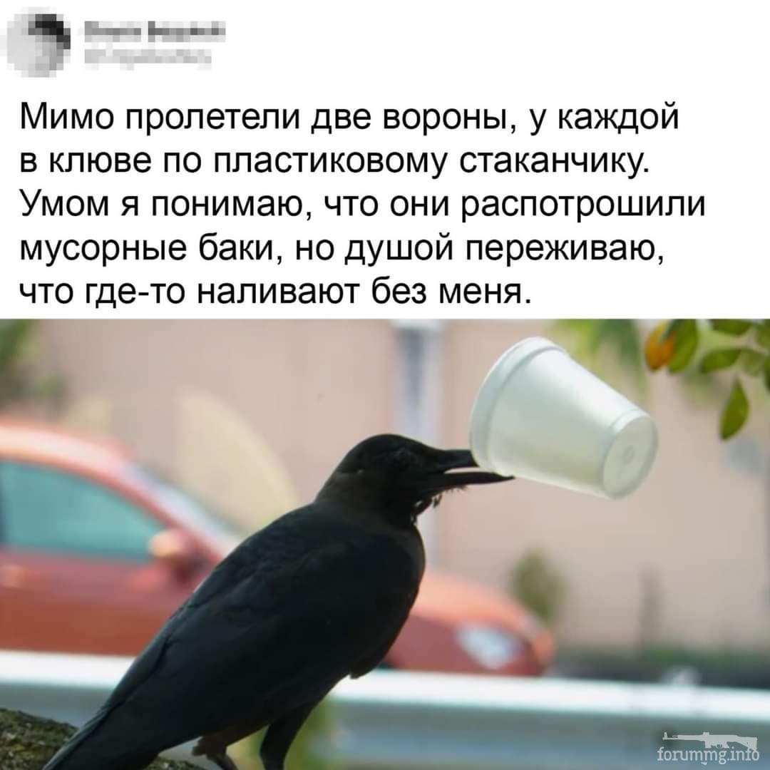 122097 - Пить или не пить? - пятничная алкогольная тема )))