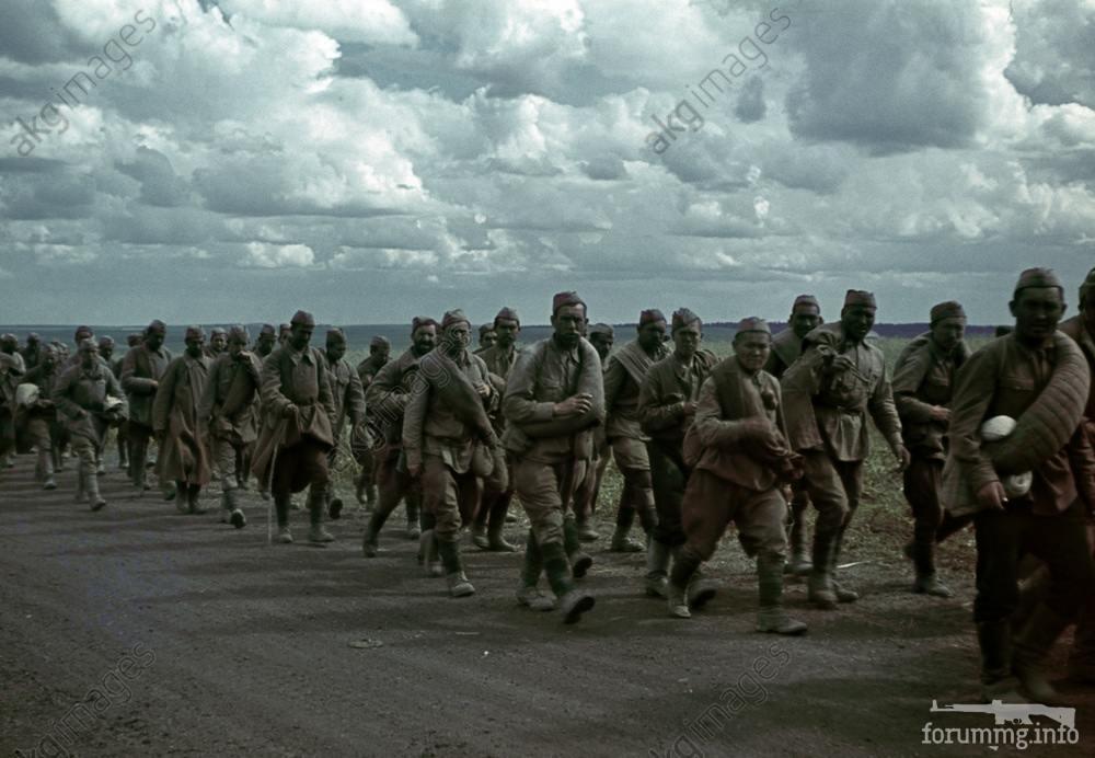 122518 - Военное фото 1941-1945 г.г. Восточный фронт.