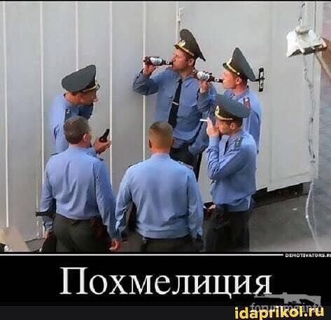 122538 - Пить или не пить? - пятничная алкогольная тема )))