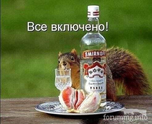 122852 - Пить или не пить? - пятничная алкогольная тема )))