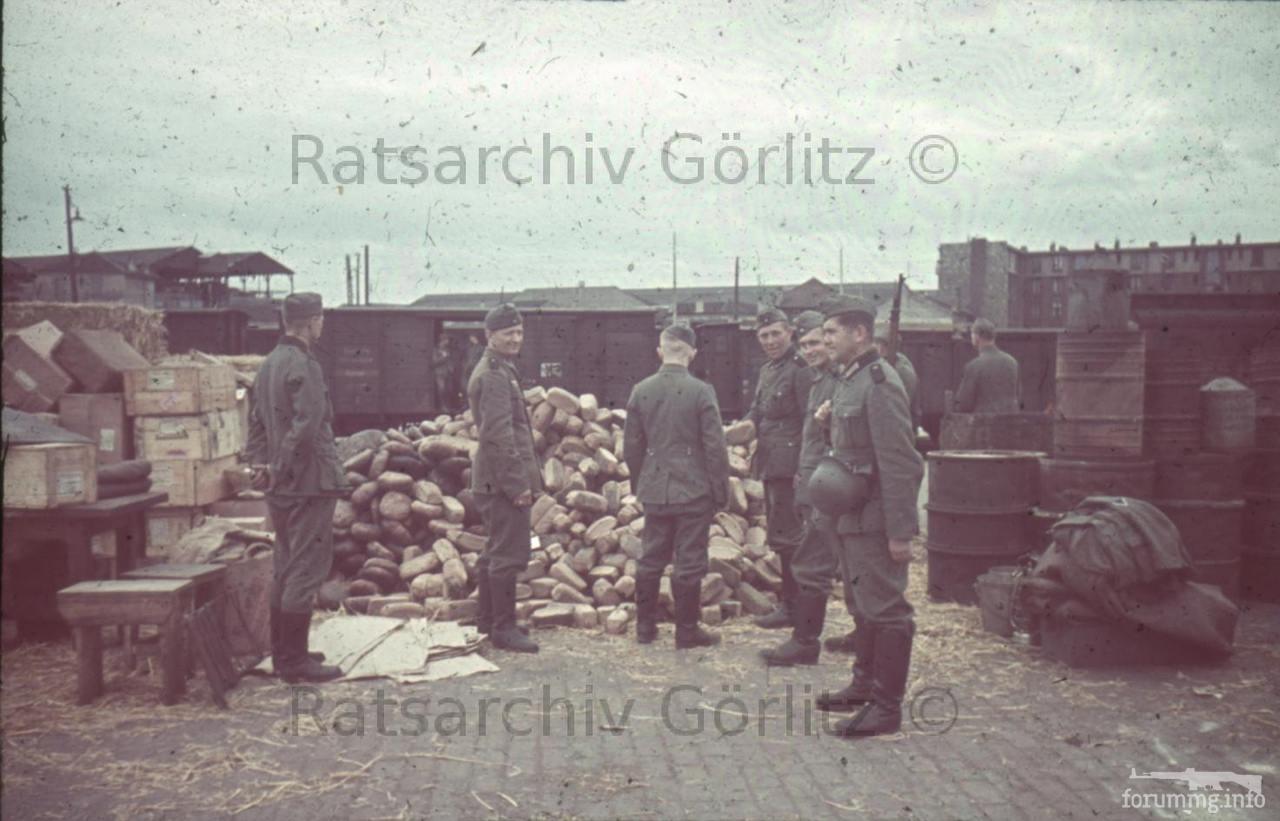 123256 - Военное фото 1939-1945 г.г. Западный фронт и Африка.
