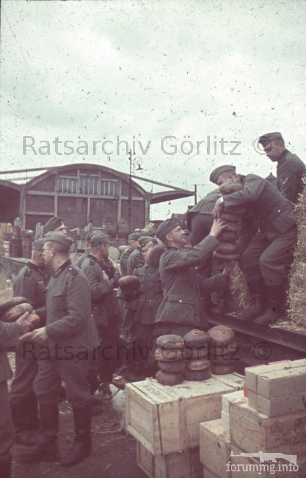 123257 - Военное фото 1939-1945 г.г. Западный фронт и Африка.