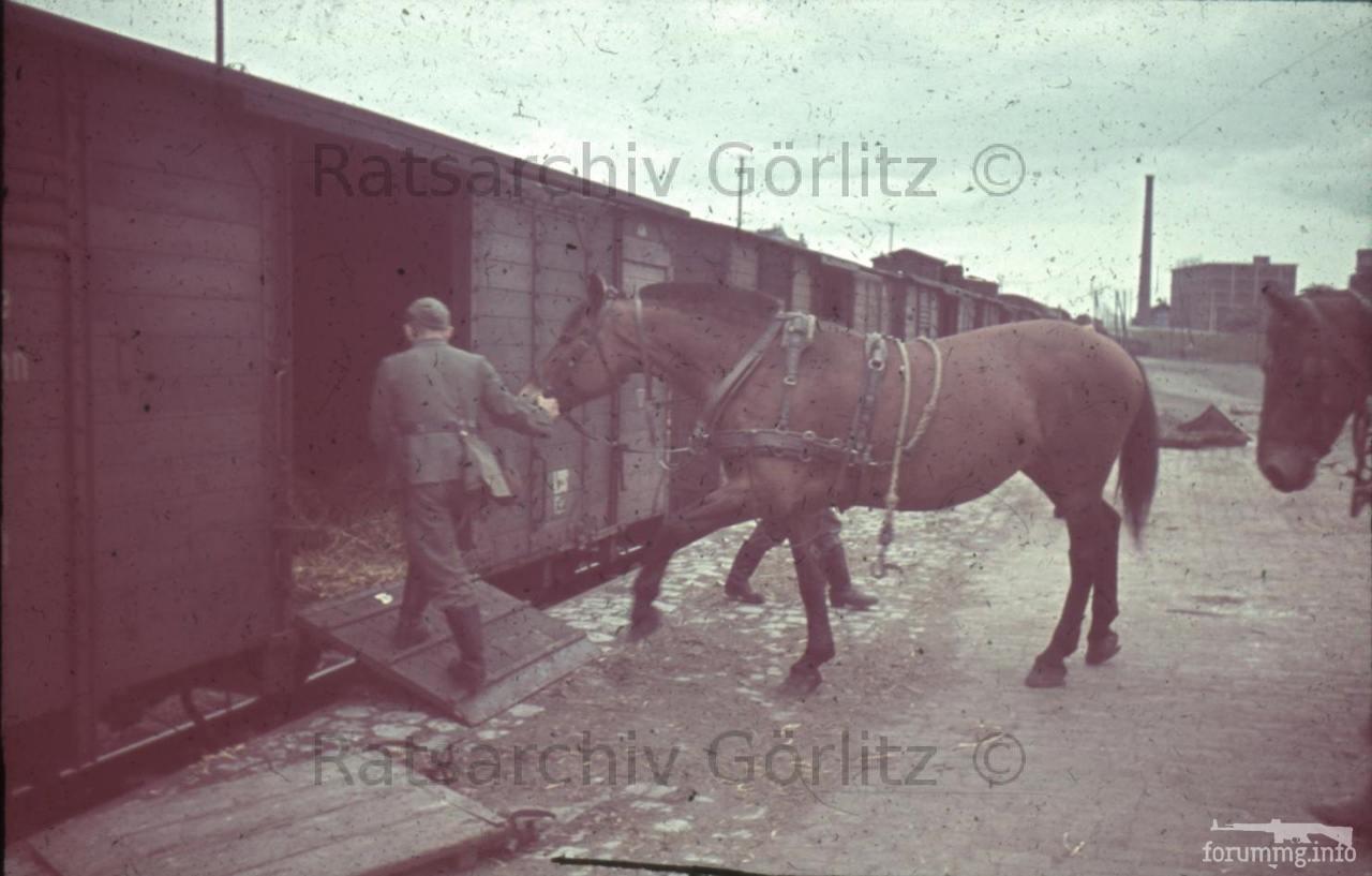 123260 - Военное фото 1939-1945 г.г. Западный фронт и Африка.