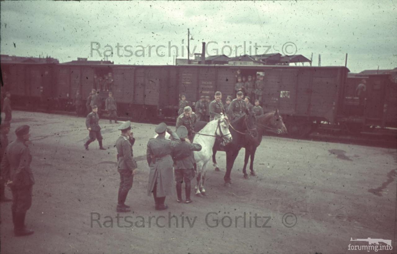 123265 - Военное фото 1939-1945 г.г. Западный фронт и Африка.