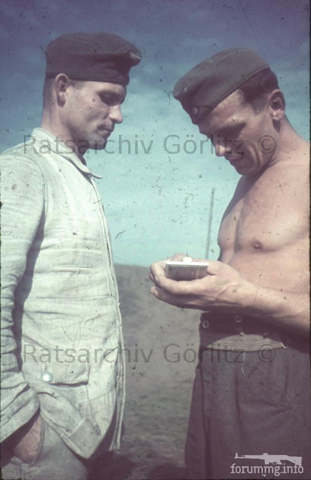 123285 - Военное фото 1939-1945 г.г. Западный фронт и Африка.